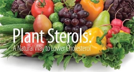Plant-Sterols-Stanols-lower-cholesterol